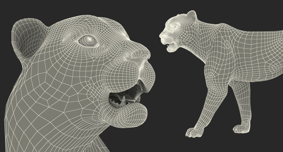 Leopard Walking Pose with Fur royalty-free 3d model - Preview no. 17