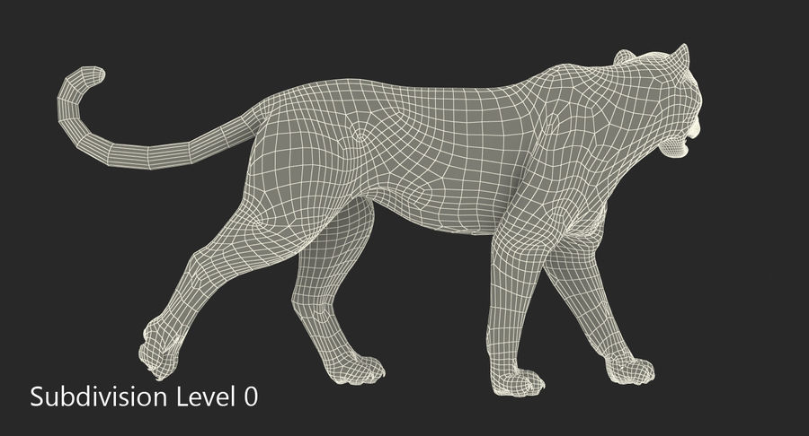 Leopard Walking Pose with Fur royalty-free 3d model - Preview no. 11