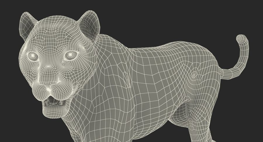 Leopard Walking Pose with Fur royalty-free 3d model - Preview no. 16