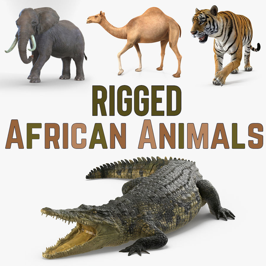 Rigged African Animals 3D Models Collection royalty-free 3d model - Preview no. 1