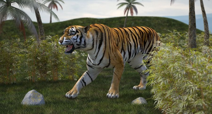 Rigged African Animals 3D Models Collection royalty-free 3d model - Preview no. 14