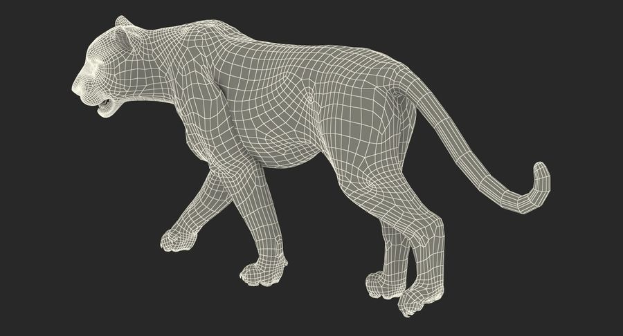 Rigged African Animals 3D Models Collection royalty-free 3d model - Preview no. 34