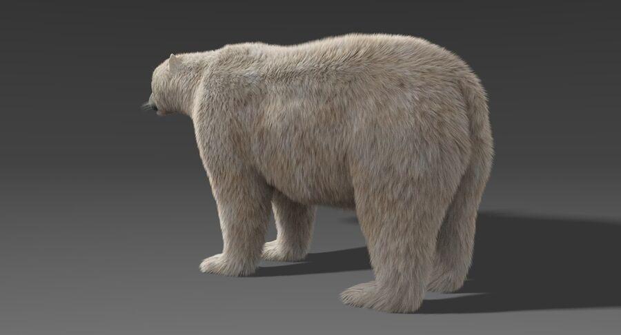 Polar Bear (Fur) royalty-free 3d model - Preview no. 5