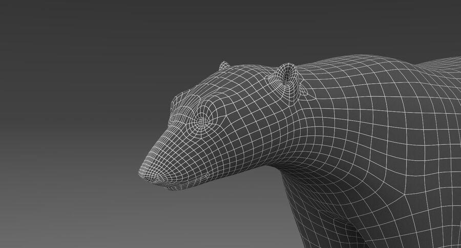 Polar Bear (Fur) royalty-free 3d model - Preview no. 14