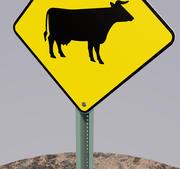 道路标志牛 3d model