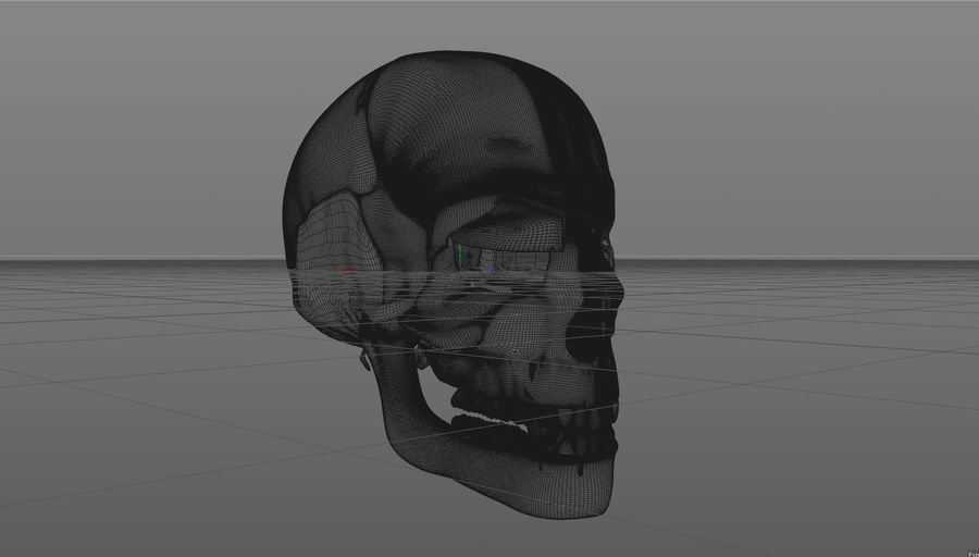 Skull royalty-free 3d model - Preview no. 19