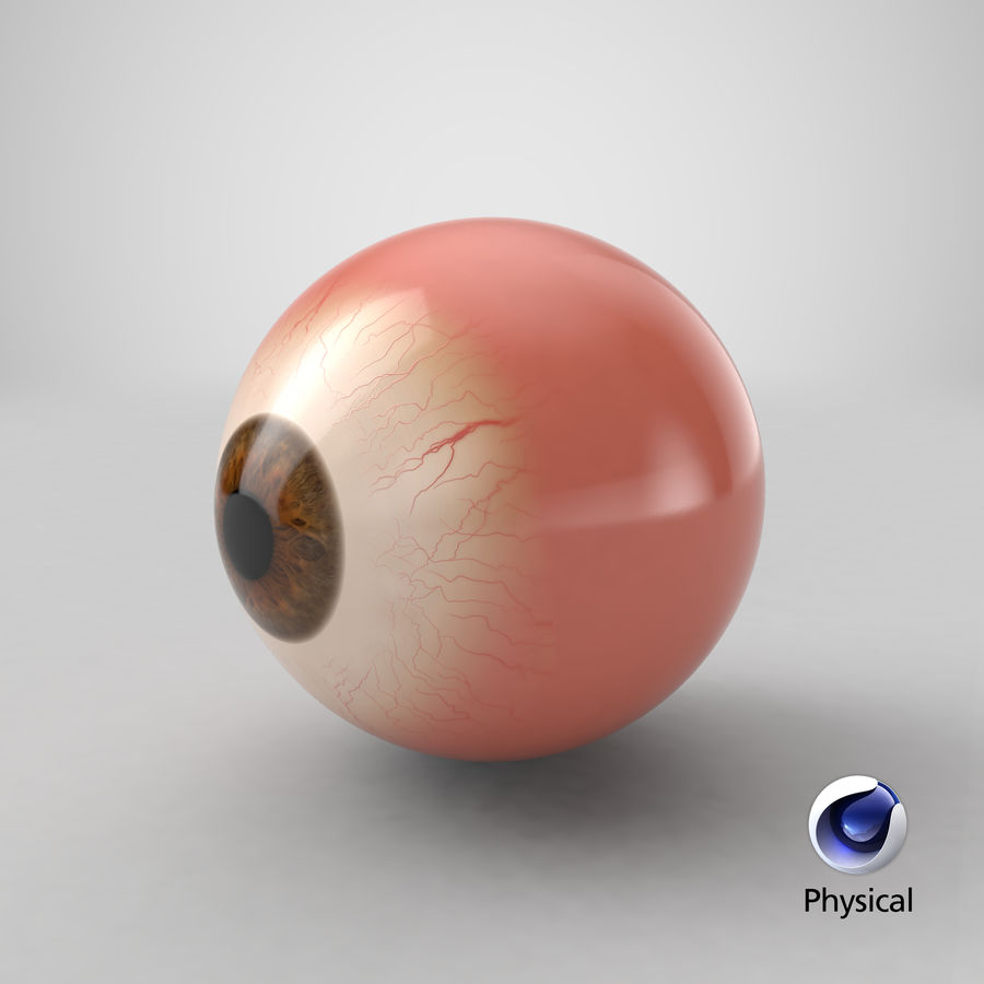 Eyeball royalty-free 3d model - Preview no. 18