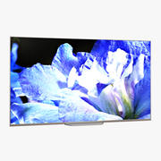 55 OLED TV On 3D Model 3d model