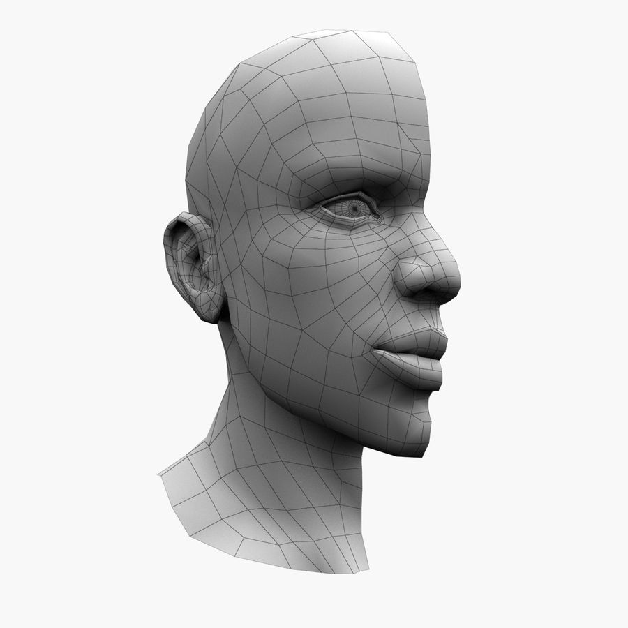 Hoofd anatomie royalty-free 3d model - Preview no. 8