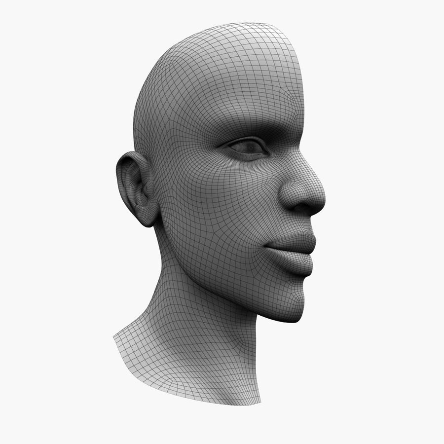 Hoofd anatomie royalty-free 3d model - Preview no. 7