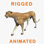 Cheetah Rigged Animado modelo 3d
