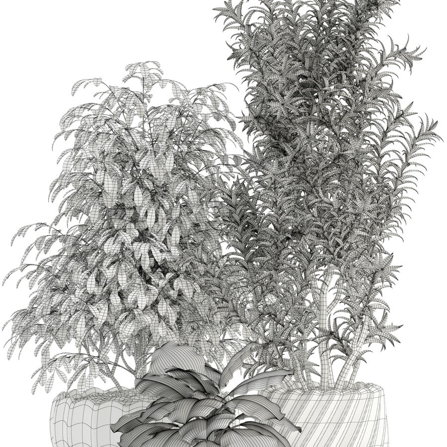 Plantencollectie 111 royalty-free 3d model - Preview no. 4