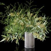 Eucalyptus bouquet 3d model
