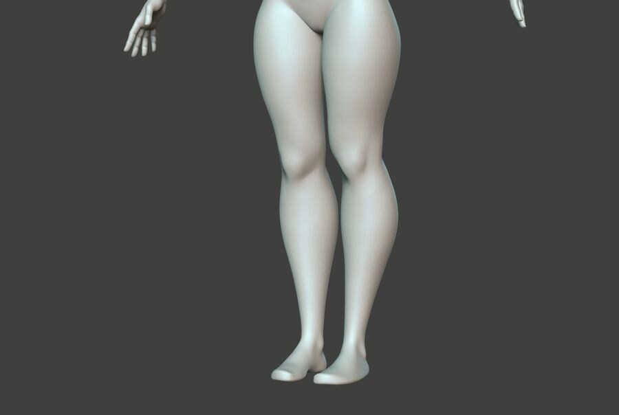 Corpo Feminino Basemesh 11 royalty-free 3d model - Preview no. 8