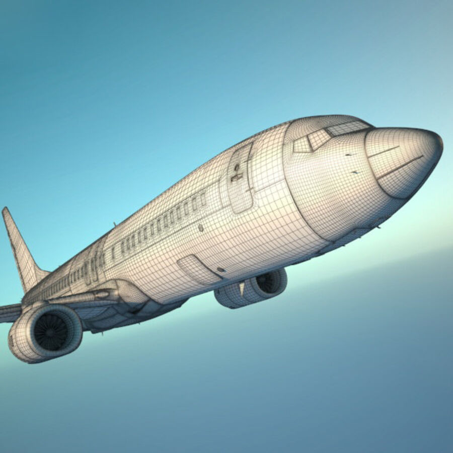 Boeing 737-800 royalty-free 3d model - Preview no. 16