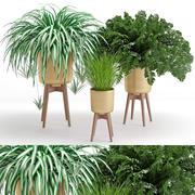 Planta de casa 30 3d model