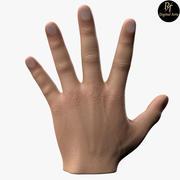 Męska ręka 3d model