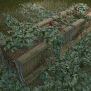 Plantes de jardin 3d model