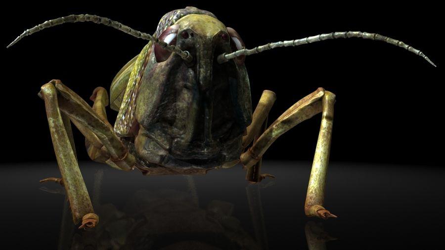 szarańcza / owady royalty-free 3d model - Preview no. 4