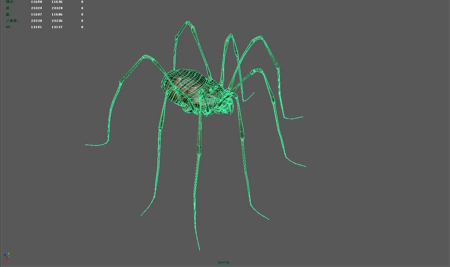 クモ/クモ/昆虫 royalty-free 3d model - Preview no. 7