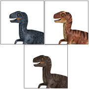 Raptor 3 in 1 3d model