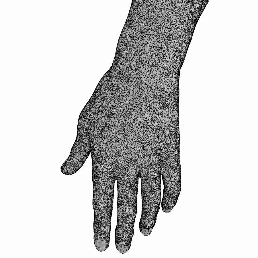 男性の腕の解剖学 royalty-free 3d model - Preview no. 8