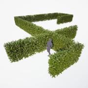 Generisk häck - blommande 3d model