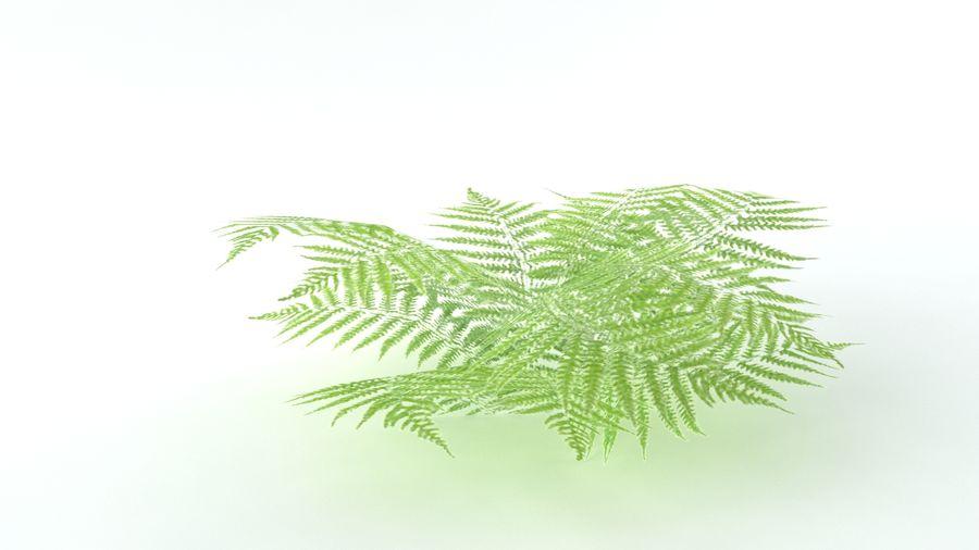 A set of vegetation royalty-free 3d model - Preview no. 10