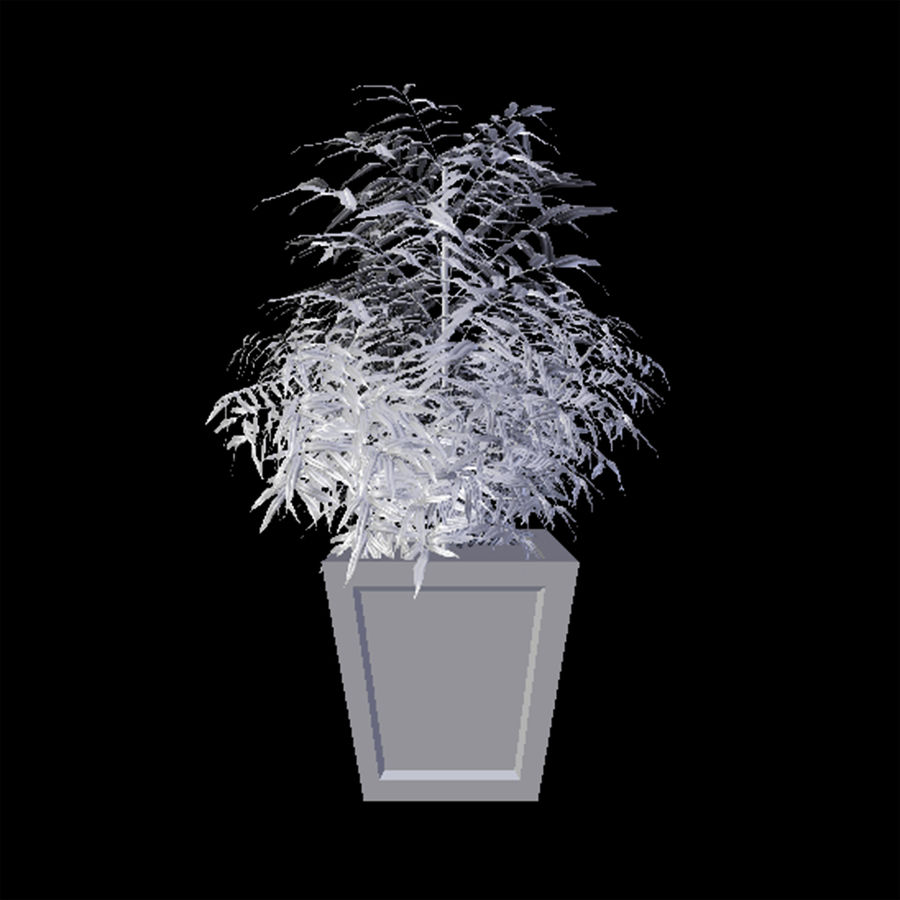 Dekorative Pflanze royalty-free 3d model - Preview no. 4