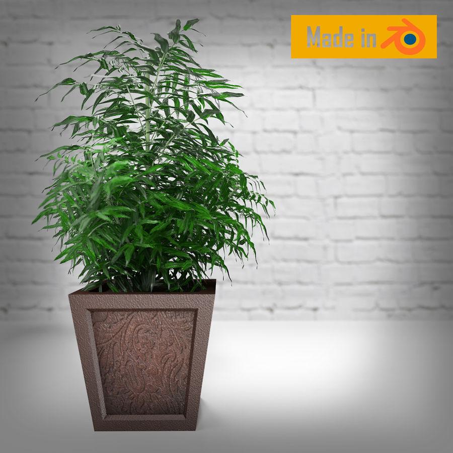 Dekorative Pflanze royalty-free 3d model - Preview no. 3