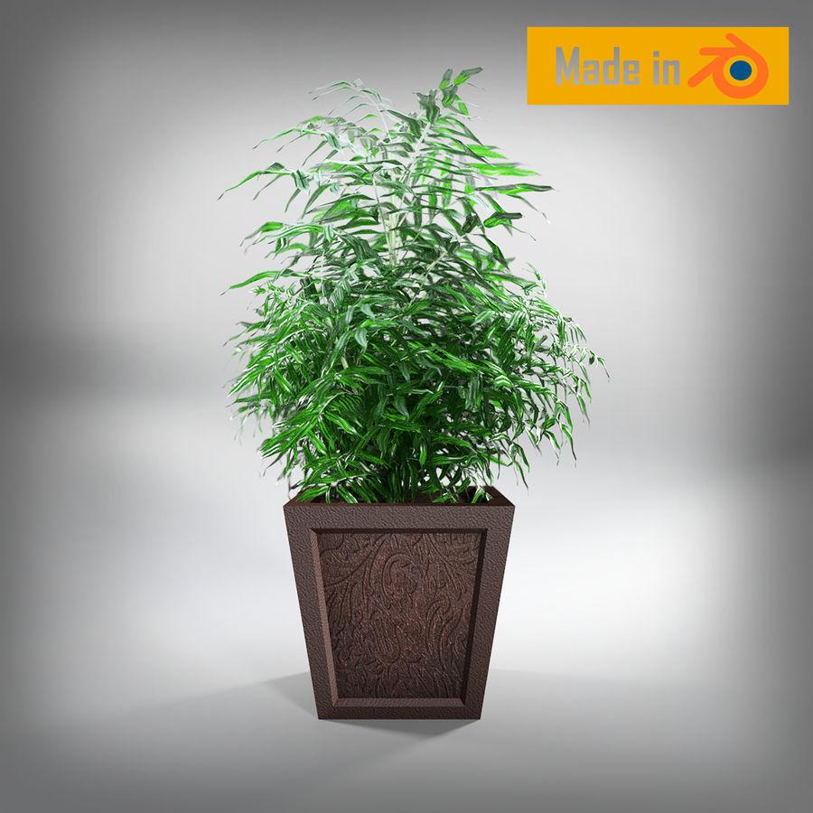 Dekorative Pflanze royalty-free 3d model - Preview no. 2