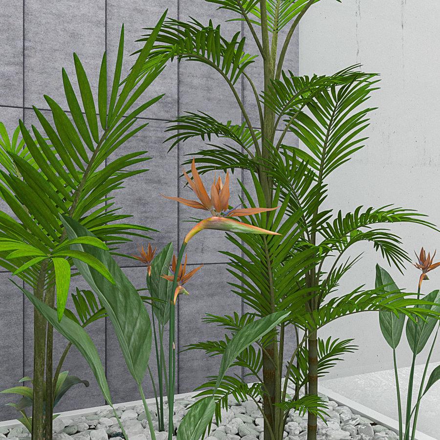Blumen und Pflanzen gesetzt royalty-free 3d model - Preview no. 3