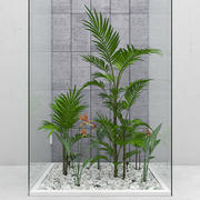 Conjunto de flores y plantas modelo 3d