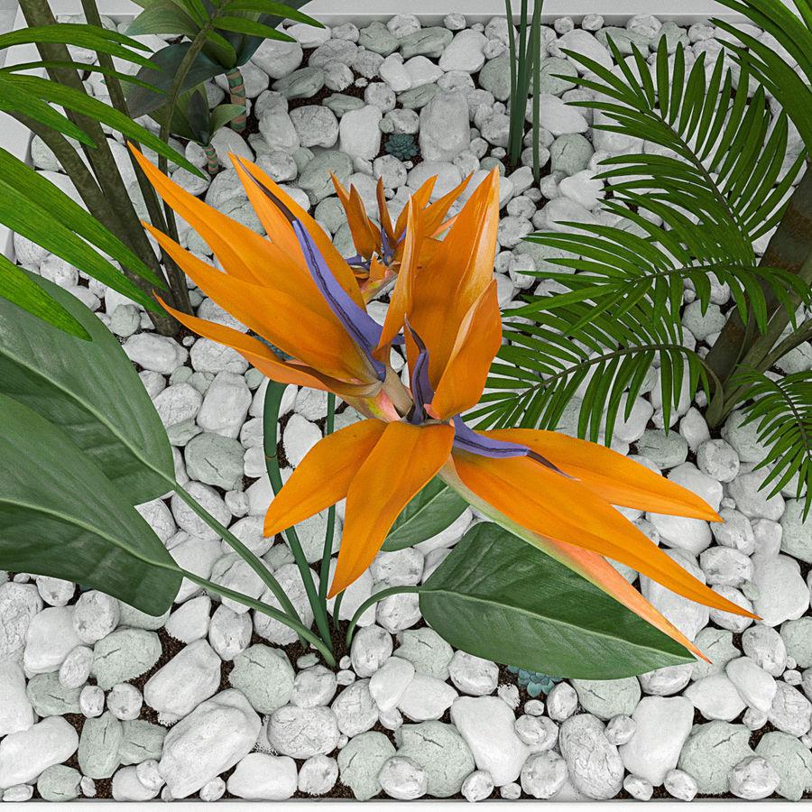 Blumen und Pflanzen gesetzt royalty-free 3d model - Preview no. 2