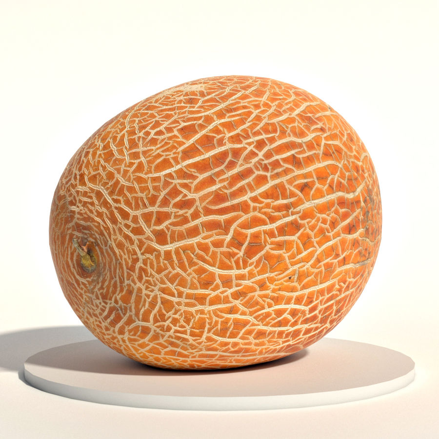 Melon royalty-free 3d model - Preview no. 1
