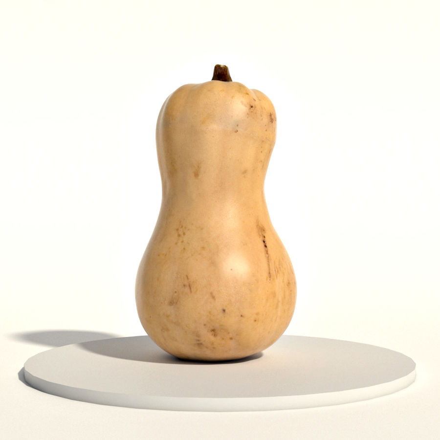 Butternut royalty-free 3d model - Preview no. 3