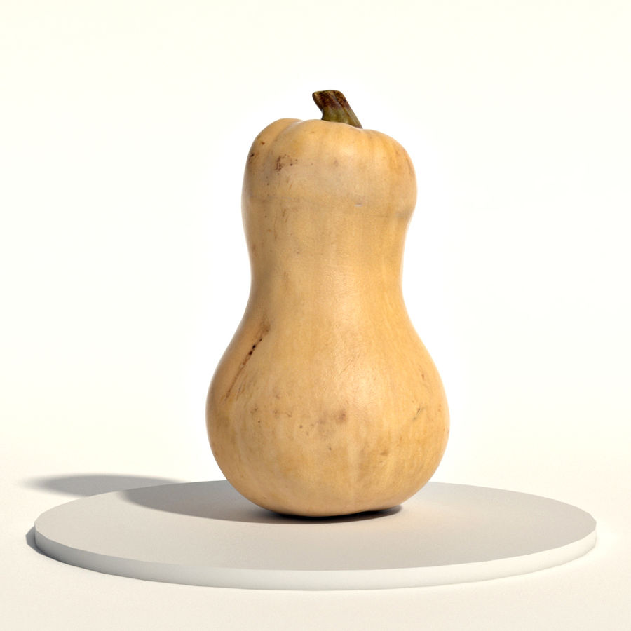 Butternut royalty-free 3d model - Preview no. 1