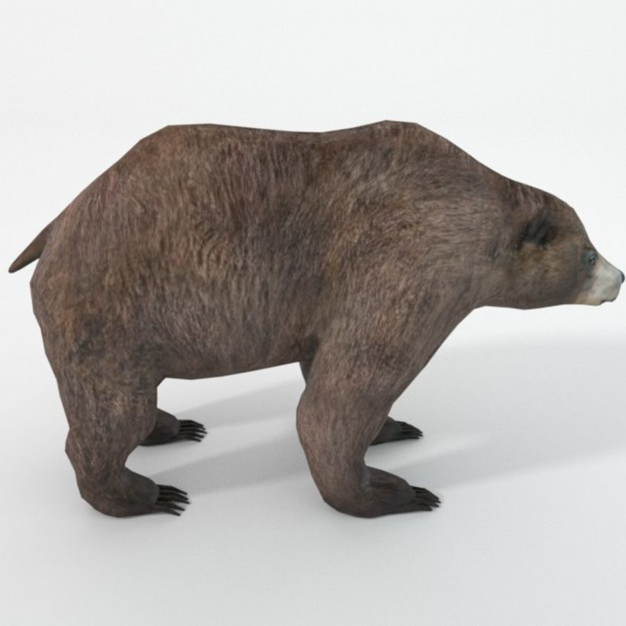 Grizzlybär royalty-free 3d model - Preview no. 1