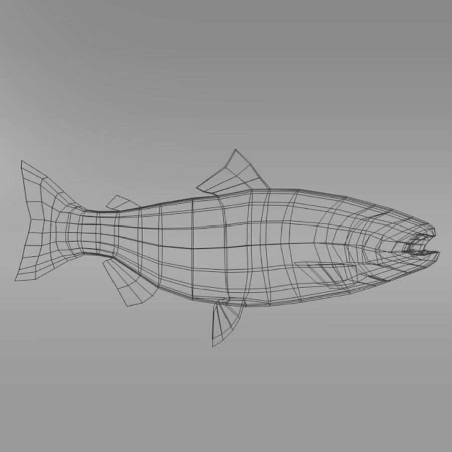 Lachs royalty-free 3d model - Preview no. 7