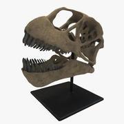 Czaszka dinozaura 3d model