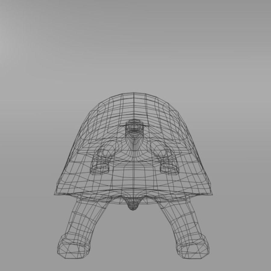 Tartaruga royalty-free 3d model - Preview no. 3