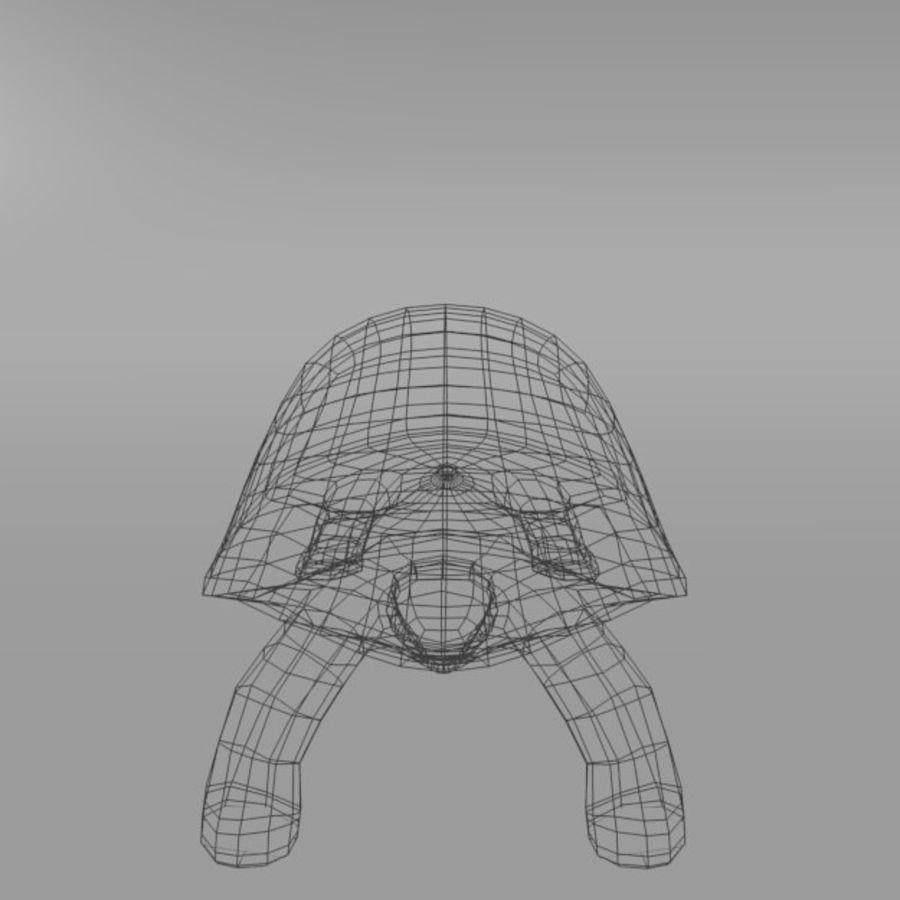 Tartaruga royalty-free 3d model - Preview no. 5