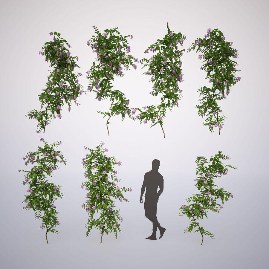 Generieke klimplanten royalty-free 3d model - Preview no. 10