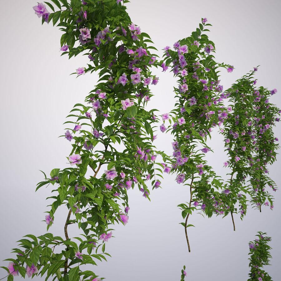 Generieke klimplanten royalty-free 3d model - Preview no. 13