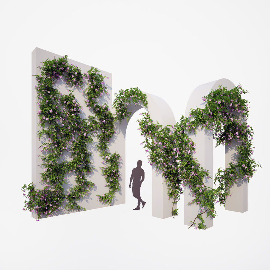Generieke klimplanten royalty-free 3d model - Preview no. 1