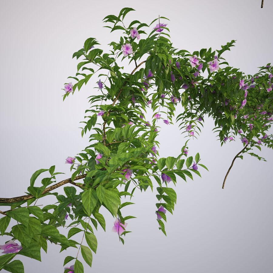 Generieke klimplanten royalty-free 3d model - Preview no. 9