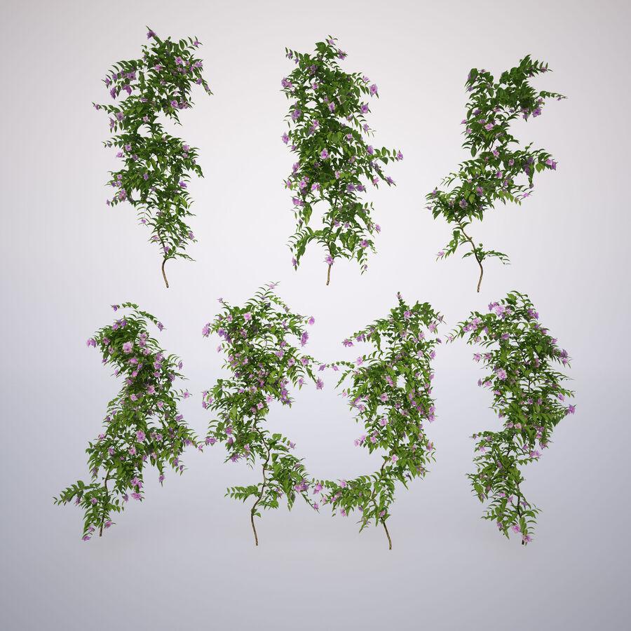 Generieke klimplanten royalty-free 3d model - Preview no. 2