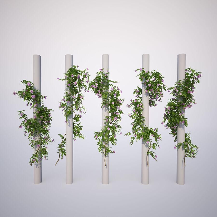 Generieke klimplanten royalty-free 3d model - Preview no. 4