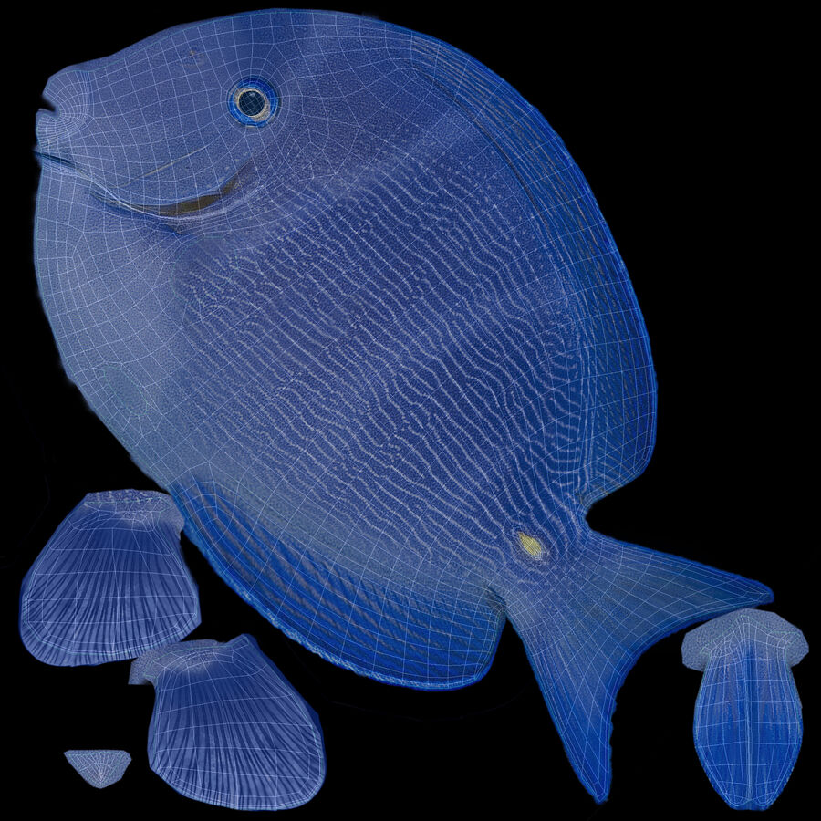 corals and coral fishes collection royalty-free 3d model - Preview no. 240