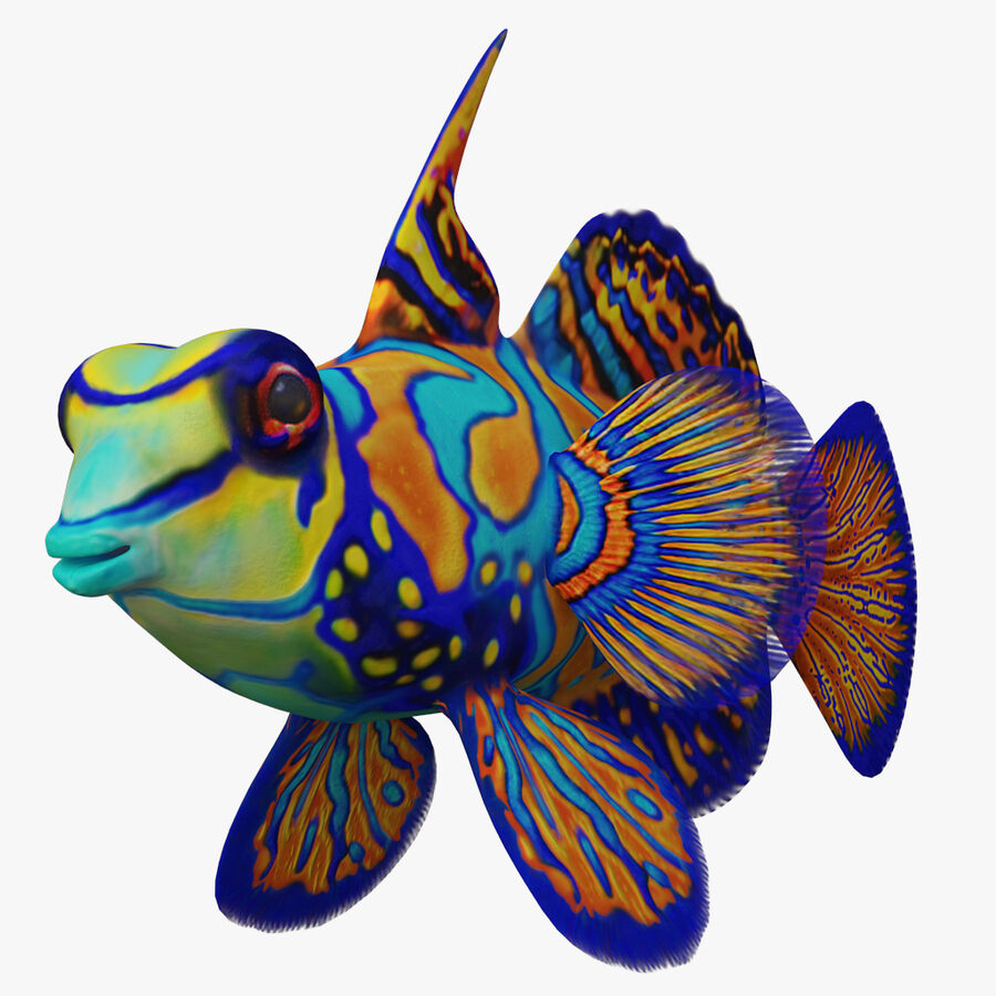 corals and coral fishes collection royalty-free 3d model - Preview no. 252